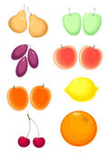 Fruits set . vector without gradient — Stock Vector