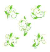 Set green floral elements with eco leaves isolated — Stock Vector