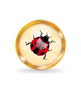 Golden circle label (button) with ladybug — Vettoriale Stock