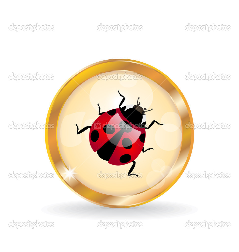 Illustration golden circle label (button) with ladybug - vector  Stock Vector #11697031