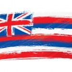 Grunge Hawaii flag — Stock Vector