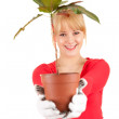 Cheerful woman with plant in pot - Stock Photo