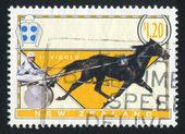 新西兰-大约 1996年: 由新西兰,印制邮票显示赛马和车上的竞技场,il vicolo,大约在 1996年 — 图库照片