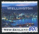 Wellington — Stock Photo