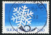 Snow Crystal — Stock Photo