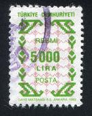Turco padrão — Foto Stock