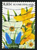 Flores de primavera — Foto de Stock