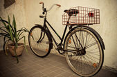 Old retro bicycle leaned the wall — Photo