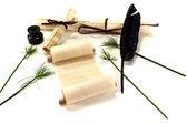 Papirus roladki z piórem — Zdjęcie stockowe