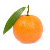 Orange mandarin — Stock Photo