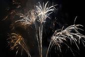 Colorful fireworks — Стоковое фото