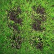 Stockfoto: Boot prints in grass