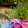 Stock Photo: Still life in a garden