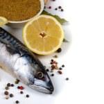 Raw mackerel — Stock Photo #11412595