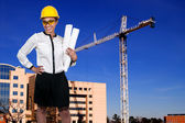 Beautiful Woman and Giant Crane — Stock Photo