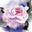 Rose in watercolor — Stock Photo