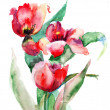 Red Tulips flowers — Stock Photo