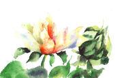 Beautiful flower in watercolor — Stock Photo