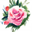Roses flowers, watercolor painting — Stock Photo