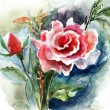 Red Roses, watercolor illustration — Stock Photo