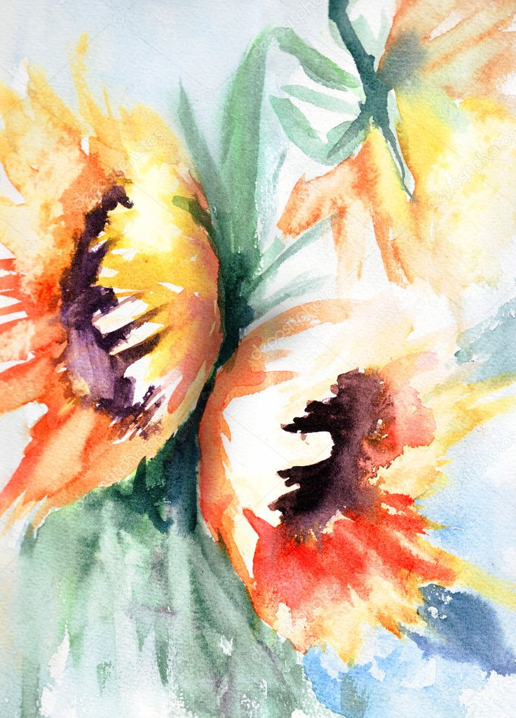 Sunflower in watercolor — Stock Photo #11648394