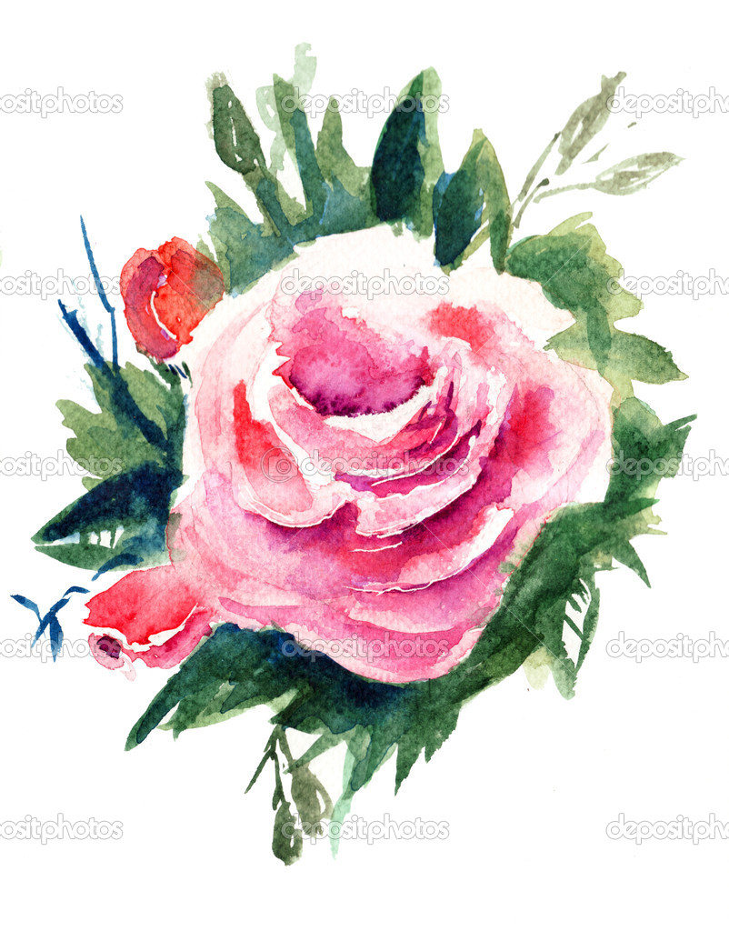 Roses flowers, watercolor painting — Stock Photo #11648441