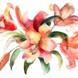 Stock Photo: Lily flowers, watercolor illustration