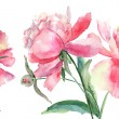 Beautiful Peonies flowers, Watercolor painting — Stock Photo #12377606