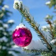 Christmas ball snow — Stock Photo