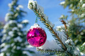Christmas ball schnee — Stockfoto
