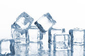 Wet and cold ice cubes — Stock Photo