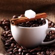 Cup with coffee beans and cinnamon stick — Stock Photo