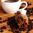 Cup of hot coffee and cinnamon sticks — Stock Photo