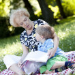 Grandmother reading the book to her grandson — Stock Photo #11835152