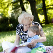 Grandmother reading the book to her grandson - Stock Photo
