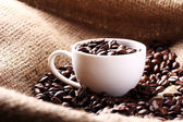 Cup full of coffee beans — 图库照片