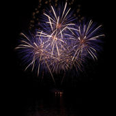 Beautiful firework — Stock Photo