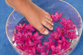 Feet in the water — Stock Photo