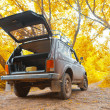 Offroad vehicle in autumn forest — Stock Photo