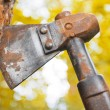 Old hatchet blade in wood stem — Stock Photo