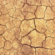 Cracks on dry ground — Stock Photo #11528946