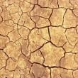 Cracks on dry ground — Stock Photo