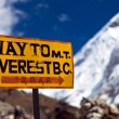 Mount Everest signpost — Stock Photo #11311760