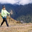 Woman hiking in mountains — Stock Photo #11357570