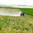 Stock Photo: Tractor spraying, agriculture