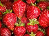 Red fresh strawberry background — Stock Photo
