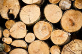 Stacked firewoods. Natural Background — Stock Photo