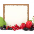 Fresh berry mix with banner on white background — Stock Photo