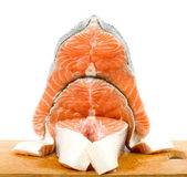 Piece of a salmon on a white background — Stock Photo