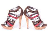 Sexy scarpe alla moda, isolate su sfondo bianco — Foto Stock